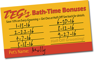 Teg's Bath-Time Bonuses Loyalty Program for Pet Grooming