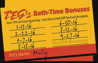 Teg's Bath-Time Bonuses Loyalty Program for Pet Grooming