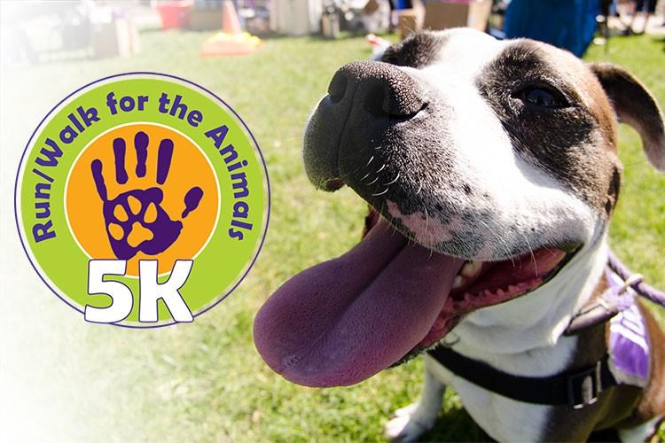 Humane Society of Harrisburg Area 5K Run/Walk