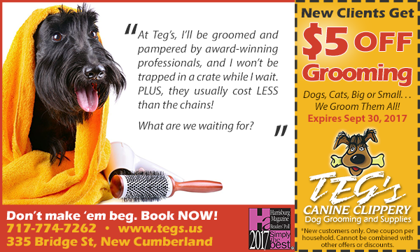 Pet Grooming Coupon - Teg's Canine Clippery - New Cumberland PA