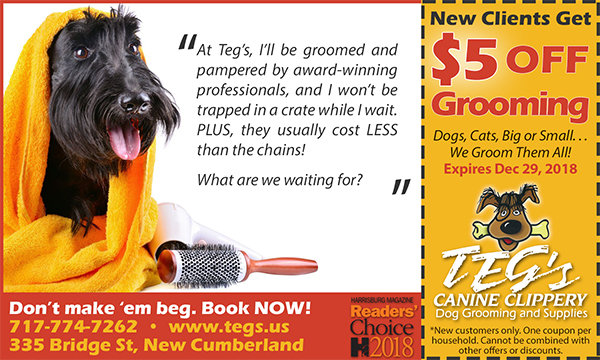 Dog Grooming Coupon - Teg's Canine Clippery - New Cumberland PA