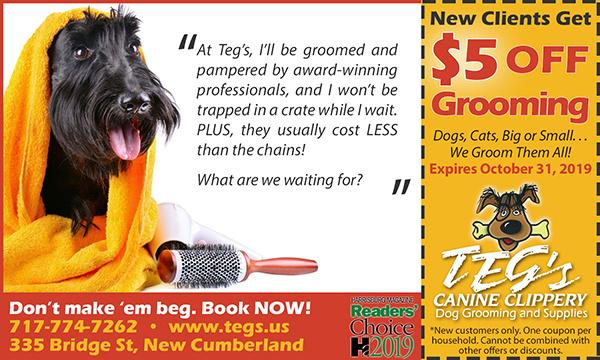 Pet Grooming Coupon - New Cumberland PA