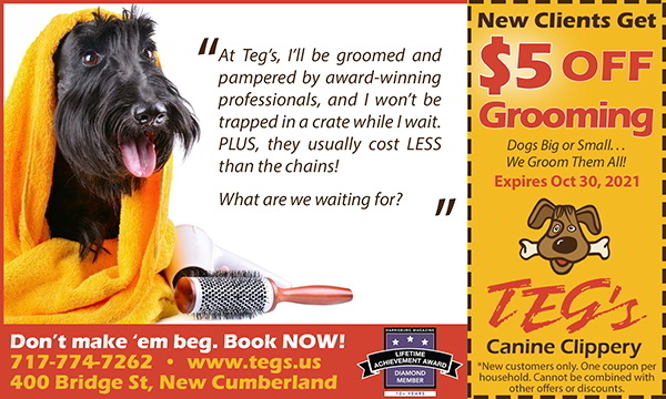 Coupon for Dog Grooming